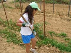 kids-garden4