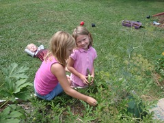 the girls finding new watermelons