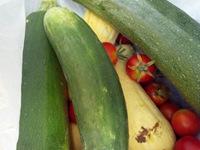 vegetables_37